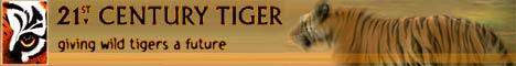 21st century tiger