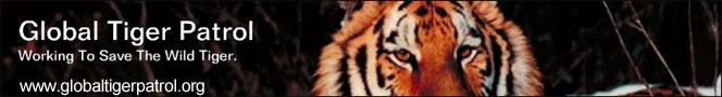 Global Tiger Patrol