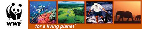 World Wide Fund - for Nature . World Wildlife Fund